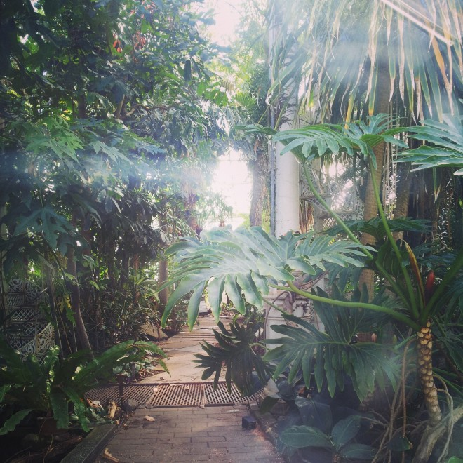We weren't allowed inside some parts of the Palm House. No idea why they call it that...