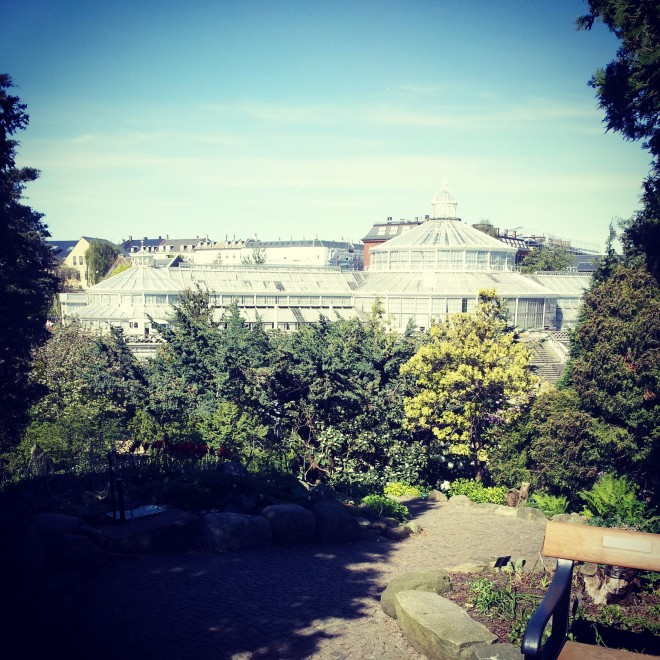 Looking over the gardens from a small hill toward the outside of the enormous Palm House.