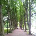 Malmö Gardens 1