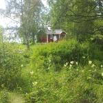 Östersund Cute House