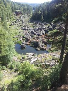 Dead Falls 1